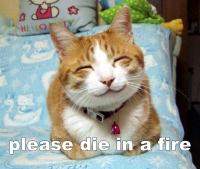 Die in a fire